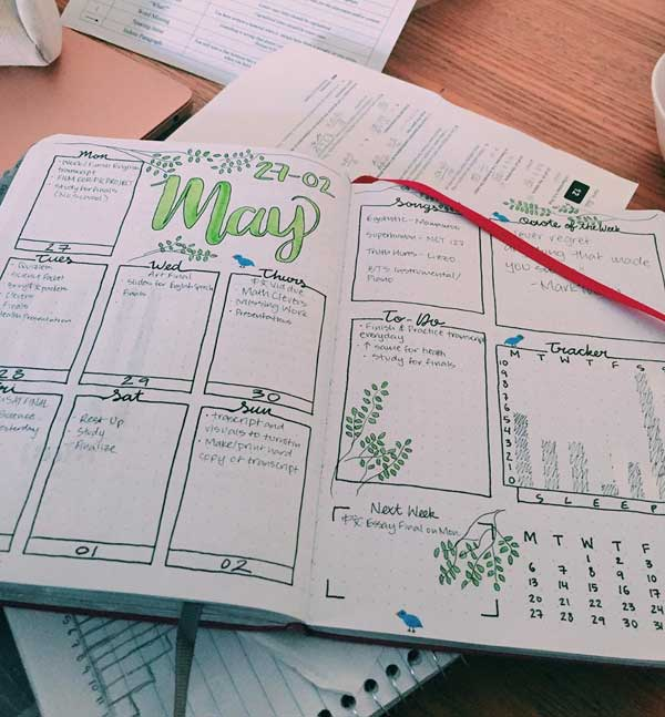 Bujo wekly spread with tracker abd to-do
