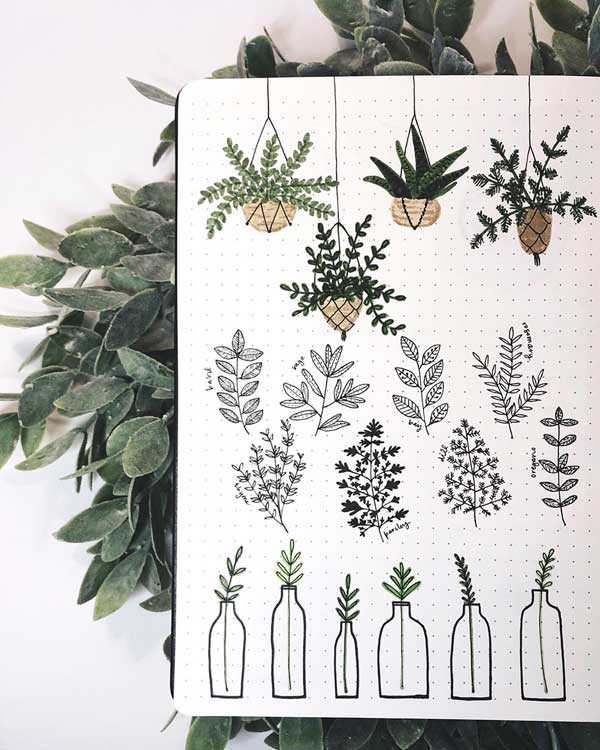 Beautiful Plant doodles