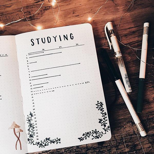 Bujo study tracker layout